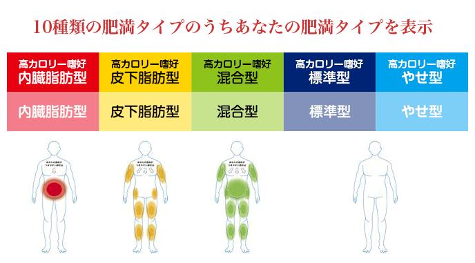 10種類の肥満タイプのうちあなたの肥満タイプを表示