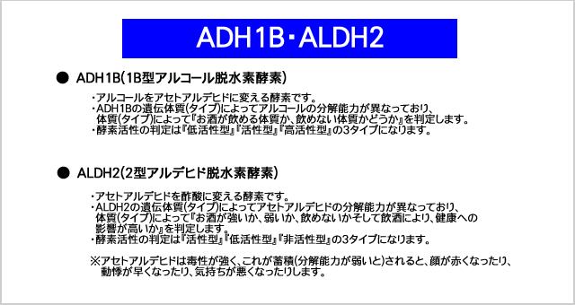 AHD1B(アルコール脱水素酵素),ALDH2(アルデヒド脱水素酵素)について