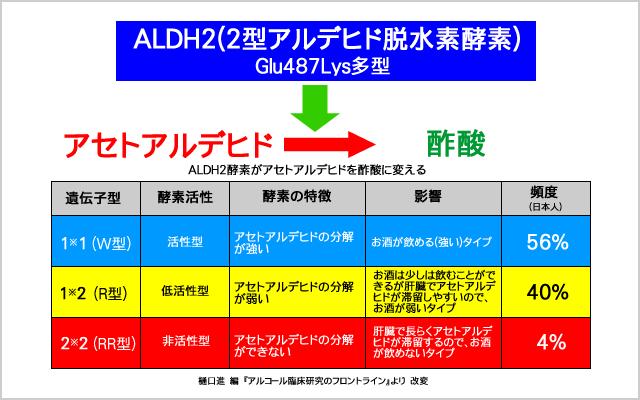 ALDH2(アルデヒド脱水素酵素)が酢酸に変える