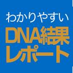 あなただけのわかりやすいDNA結果レポート