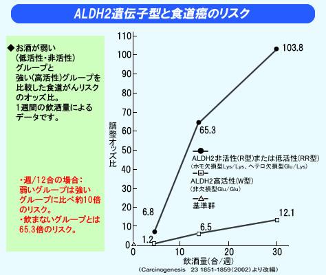 アルコール感受性遺伝子分析キット