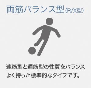 両筋 バランス型 (R/X型)