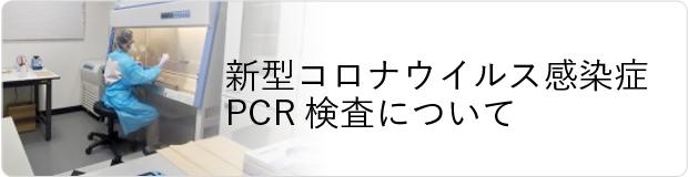 新型コロナウイルス感染症PCR検査について